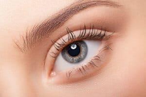 Eyelashes Grow Back   One Two Cosmetics